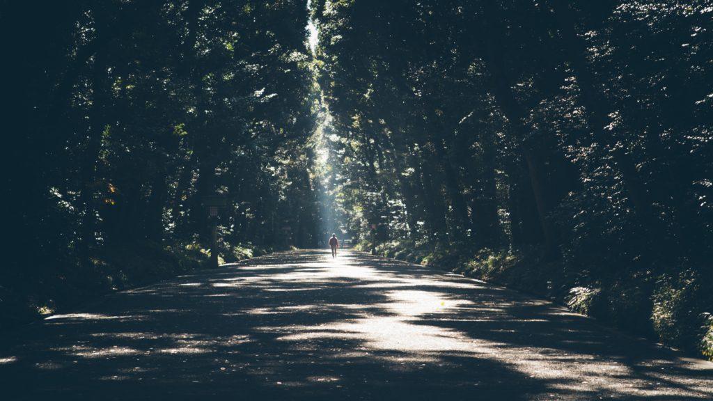 A Breakfast Walk in Forest